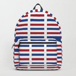 Flag of Netherlands -pays bas, holland,Dutch,Nederland,Amsterdam, rembrandt,vermeer. Backpack
