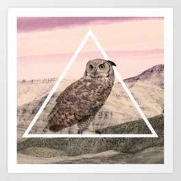 Desert Owl Art Print