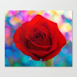 Red Rose and Rainbow Bokeh Canvas Print