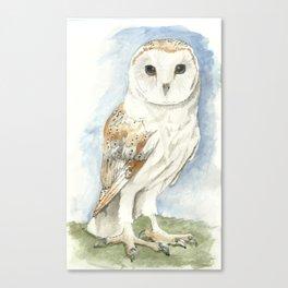 Barn Owl - Watercolor Canvas Print