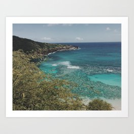 Hanauma Waters Art Print