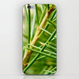 Pine/Fir Tree iPhone Skin