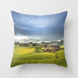 Vietnam Rice Cultivation Throw Pillow