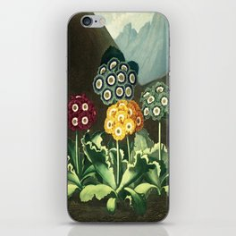 Group of Auriculas :  Temple of Flora iPhone Skin