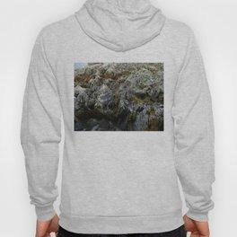 Coastal Rock Microcosms Hoody