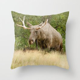 Mr Moose Throw Pillow