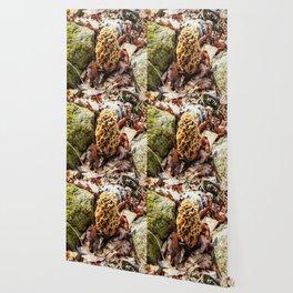 Morel Mushroom in the Wild Wallpaper