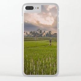 Bali rice field Clear iPhone Case