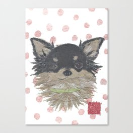 CHIHUAHUA, Long Haired Chihuahua, Dog Canvas Print