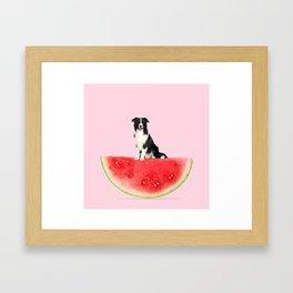 Melon Collie Framed Art Print