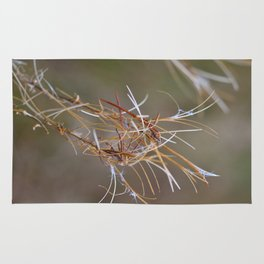 Flower Seed Heads Rug