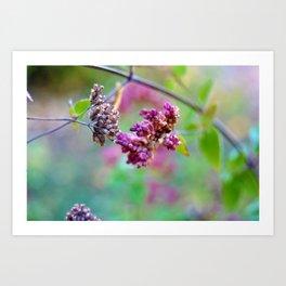 Flower No. 1 Art Print
