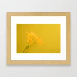 Flower Spirits B Framed Art Print