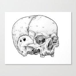 Homo sapien Canvas Print