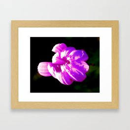 Purple Flower 2 Framed Art Print
