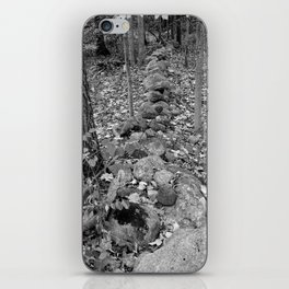 Wall in the Woods iPhone Skin