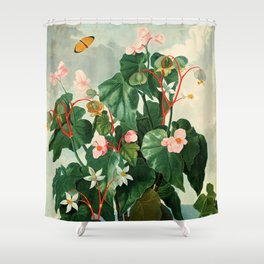 Pink Floral The Oblique-Leaved Begonias : Temple of Flora Shower Curtain