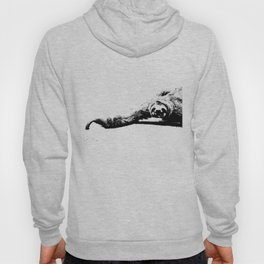 A Smiling Sloth Hoody