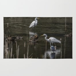 Three Great Egrets Among the Ducks, No. 2 Rug