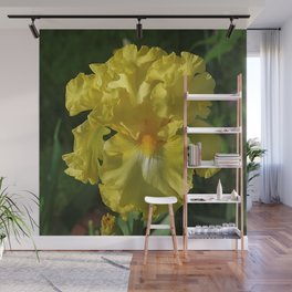 Golden Iris flower - 'Power of One' Wall Mural