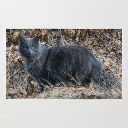 Cat in the Woods Rug