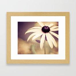 Daisy Flower Photography, Burgundy Cream Beige Brown, Neutral Floral Nature Daisies Photo Framed Art Print