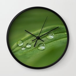 Water drops on green grass Wall Clock