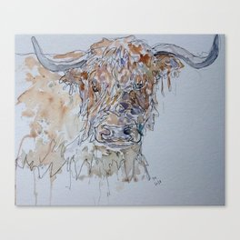 Highland cow line drawing. Canvas Print