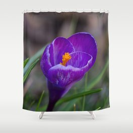 Crocus Pocus 2 Shower Curtain