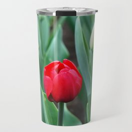 Spring flowers blooming in April and May on lawns, bushes and trees in the city park. Travel Mug