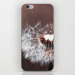 Dandelion Flower iPhone Skin