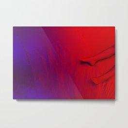 Red feet Metal Print