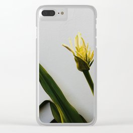Minimal Clear iPhone Case