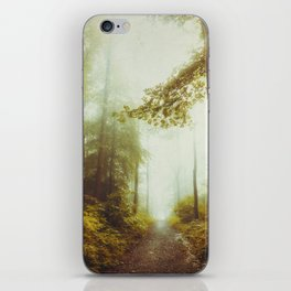 Path to Inner Peace iPhone Skin
