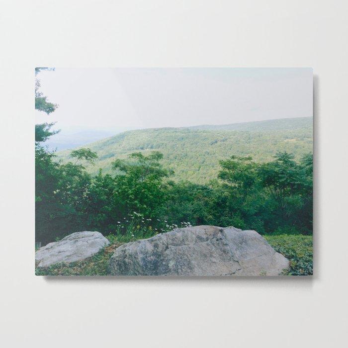 Wildflowers and Hills Metal Print