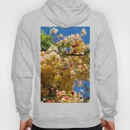 Wilhelmina Tenney Rainbow Shower Tree Hoody