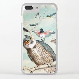 Plate V Ornithology Birds Vintage Studies Owl, Warbler, Start, Groosbeak, Wren American Bird Clear iPhone Case