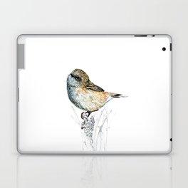 Mr Riroriro, the New Zealand Grey Warbler Laptop & iPad Skin