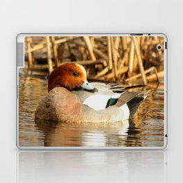 Eurasian Wigeon at the Pond Laptop & iPad Skin