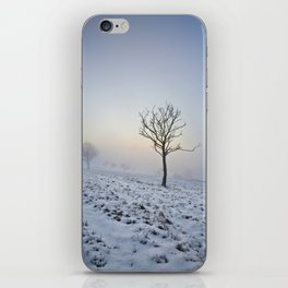 Winter in the Chilterns iPhone Skin