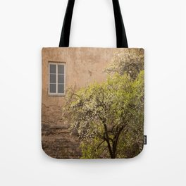 Worn Wall in Old Town #decor #society6 #buyart Tote Bag