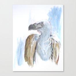 Peep Canvas Print