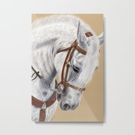 Horse Portrait 01 Metal Print