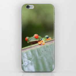 Red eye Frog on leaf Costa Rica Photography iPhone Skin