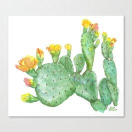 Prickly Pear Cactus Watercolor Canvas Print