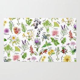 Plants & Herbs Alphabet Rug