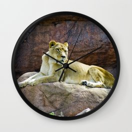 Lioness at the Toronto Zoo Wall Clock