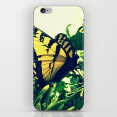 My What Long Legs You Have iPhone & iPod Skin