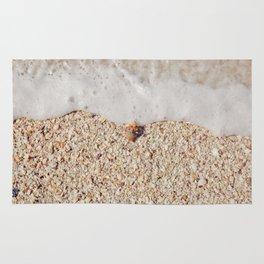 Florida beach seashell Rug