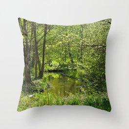 Idyllic scenery Throw Pillow